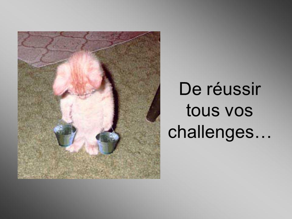 De réussir tous vos challenges…