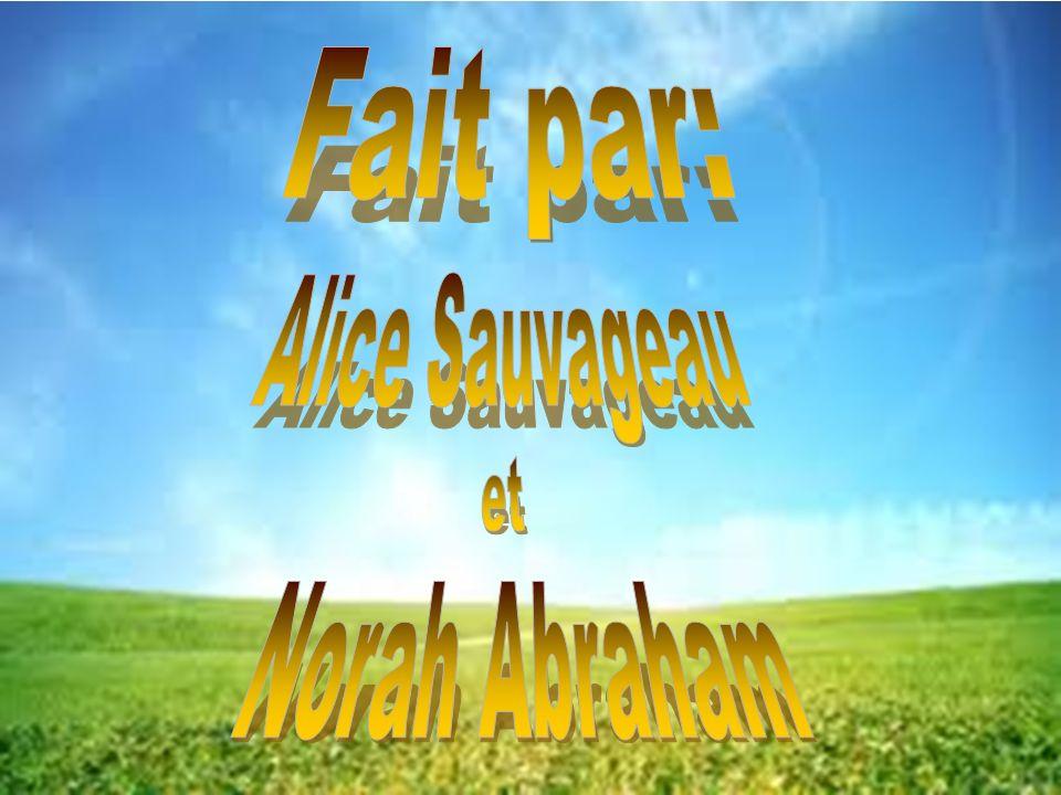 Fait par: Alice Sauvageau et Norah Abraham
