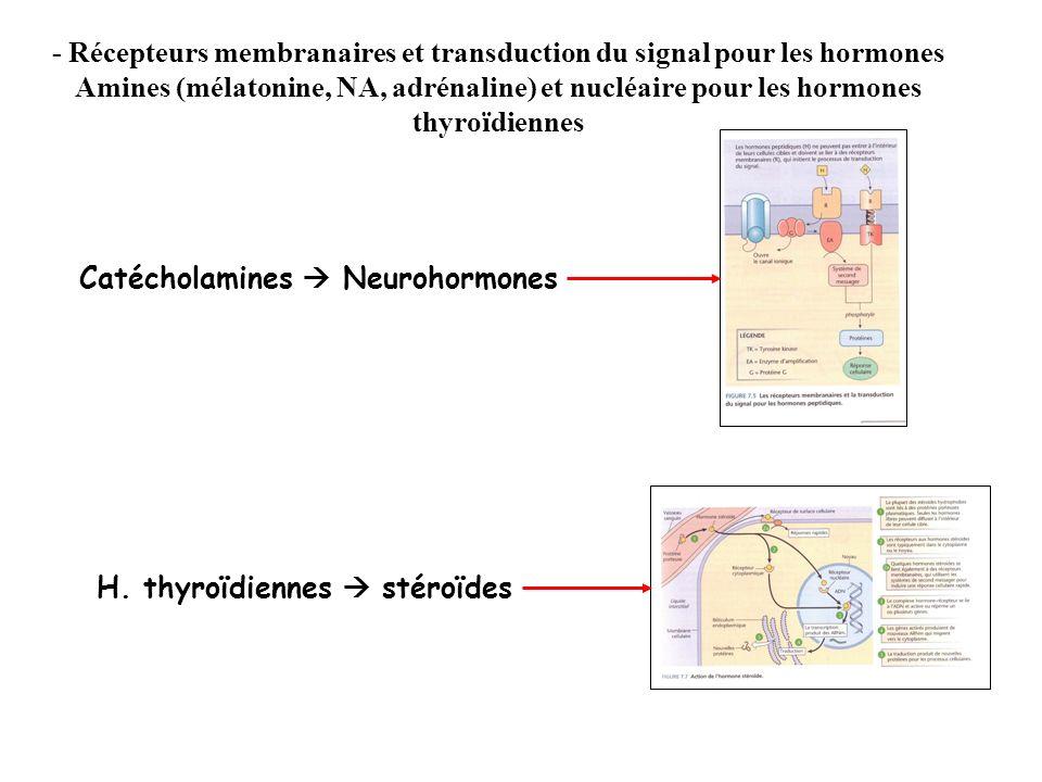 - Récepteurs membranaires et transduction du signal pour les hormones Amines (mélatonine, NA, adrénaline) et nucléaire pour les hormones thyroïdiennes