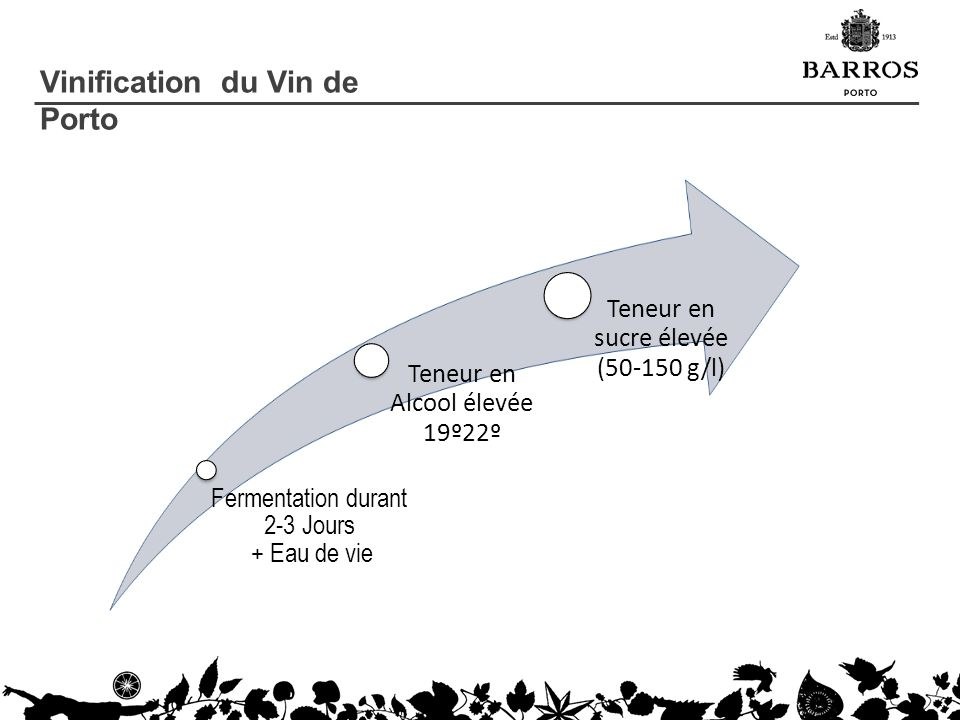 Vinification du Vin de Porto