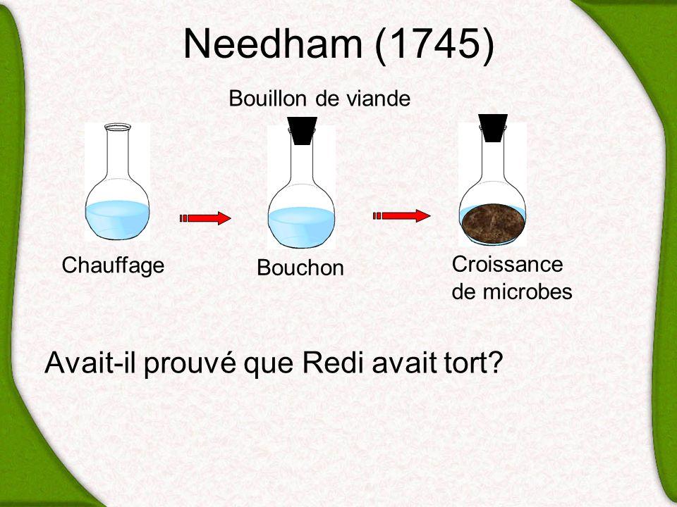 Needham (1745) Avait-il prouvé que Redi avait tort Bouillon de viande