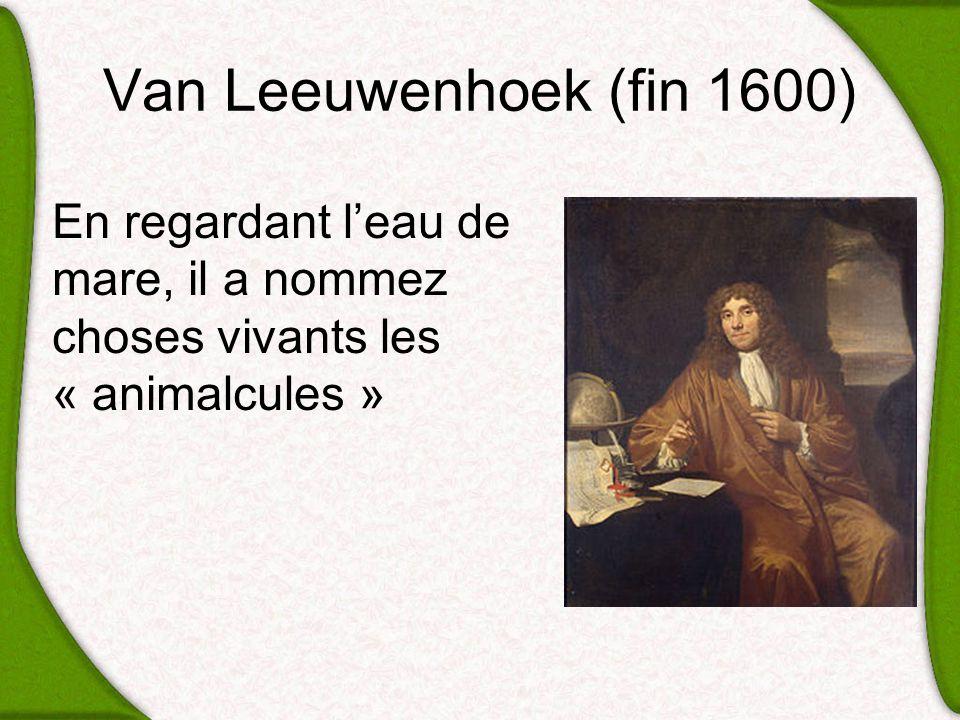 Van Leeuwenhoek (fin 1600) En regardant l'eau de mare, il a nommez choses vivants les « animalcules »