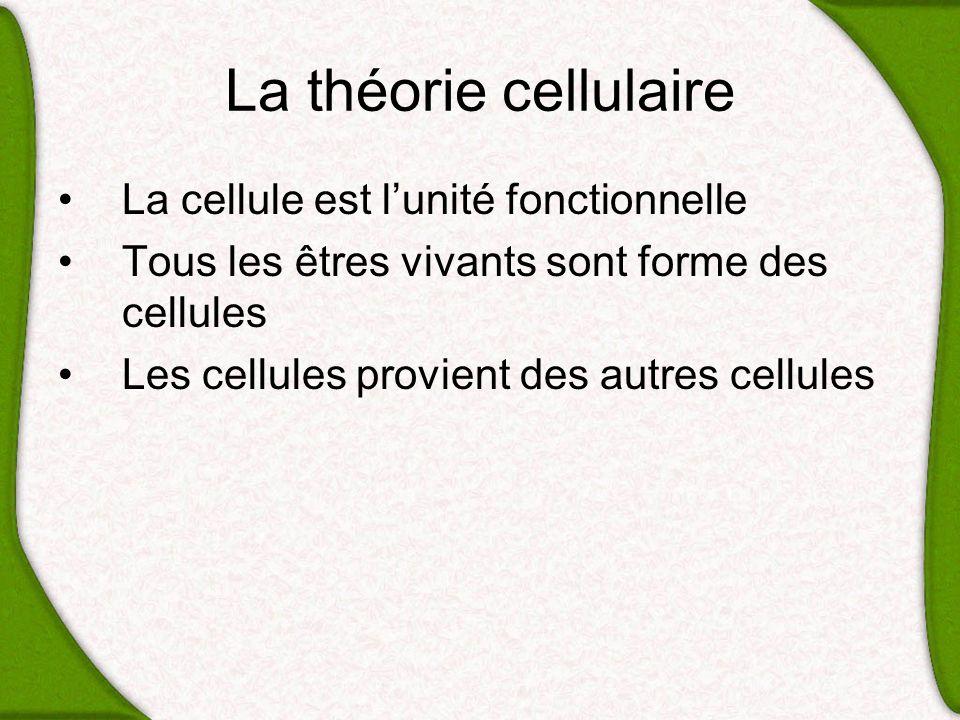 La théorie cellulaire La cellule est l'unité fonctionnelle