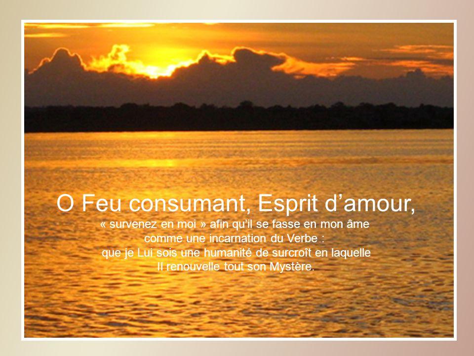O Feu consumant, Esprit d'amour,