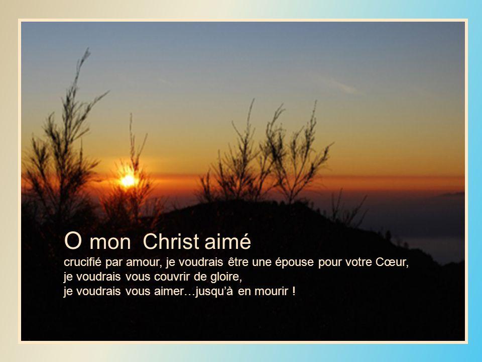 O mon Christ aimé crucifié par amour, je voudrais être une épouse pour votre Cœur, je voudrais vous couvrir de gloire,