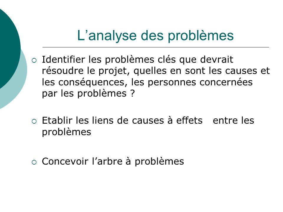 L'analyse des problèmes