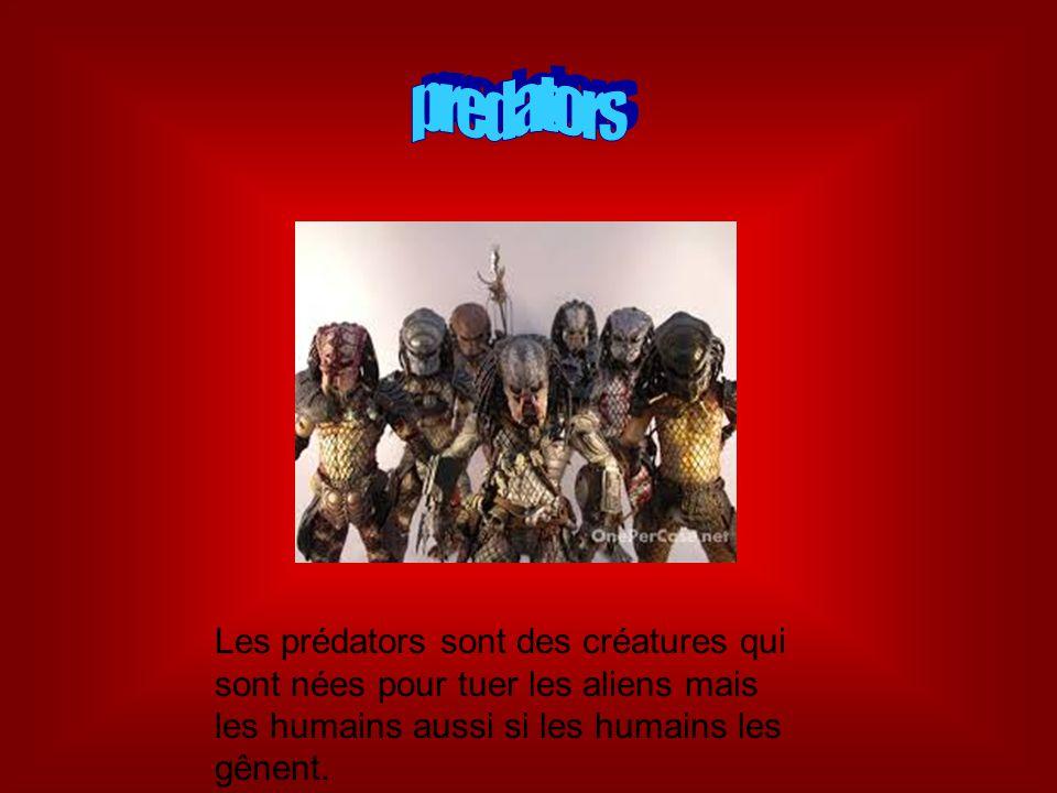 predators Les prédators sont des créatures qui sont nées pour tuer les aliens mais les humains aussi si les humains les gênent.