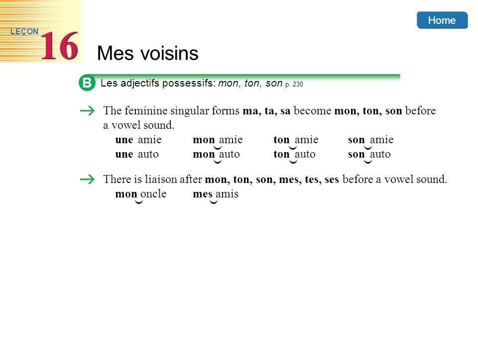 B Les adjectifs possessifs: mon, ton, son p. 230. The feminine singular forms ma, ta, sa become mon, ton, son before a vowel sound.