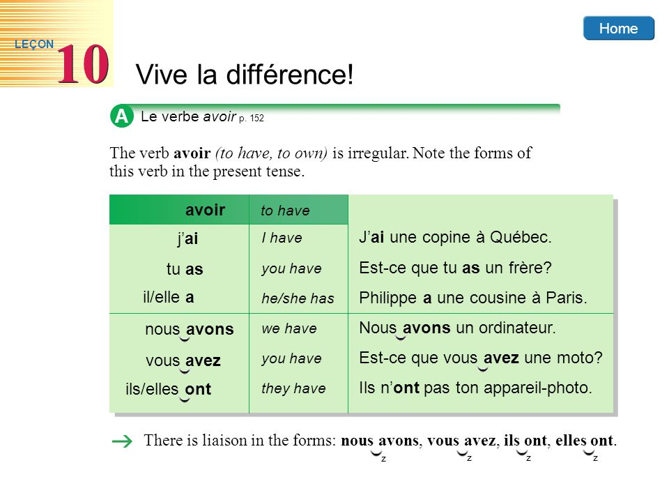 A Le verbe avoir p. 152. The verb avoir (to have, to own) is irregular. Note the forms of this verb in the present tense.