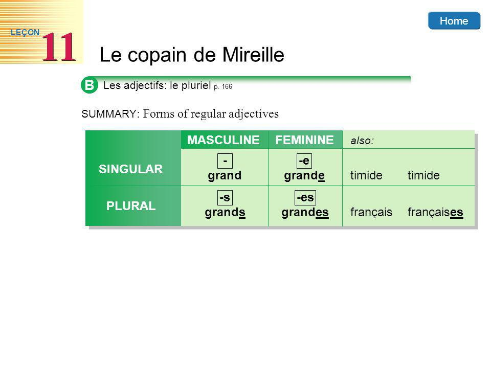 B MASCULINE parler FEMININE - grand -e grande timide timide SINGULAR