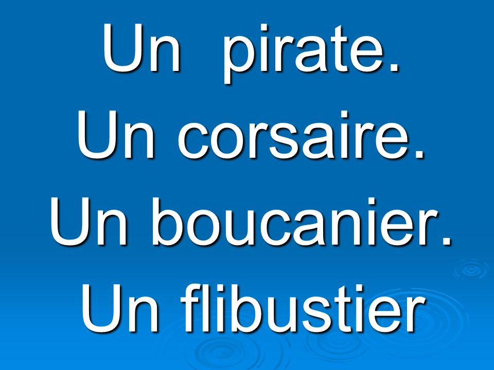 Un pirate. Un corsaire. Un boucanier. Un flibustier