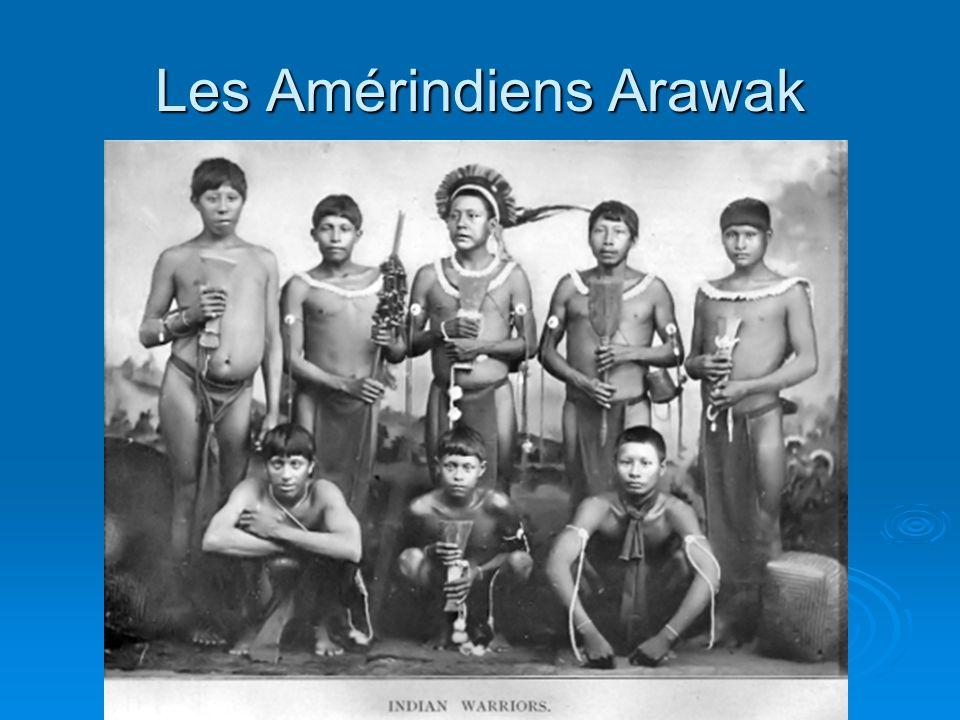 Les Amérindiens Arawak