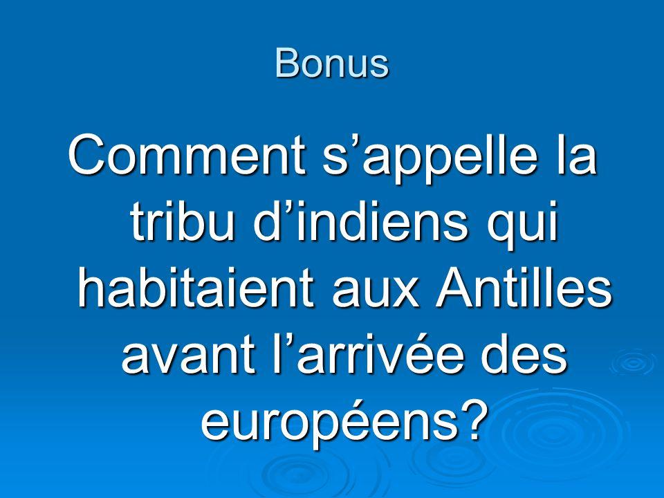 Bonus Comment s'appelle la tribu d'indiens qui habitaient aux Antilles avant l'arrivée des européens