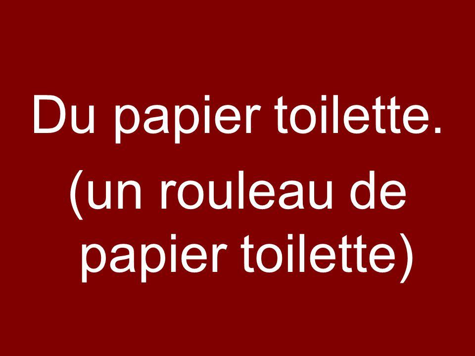 (un rouleau de papier toilette)