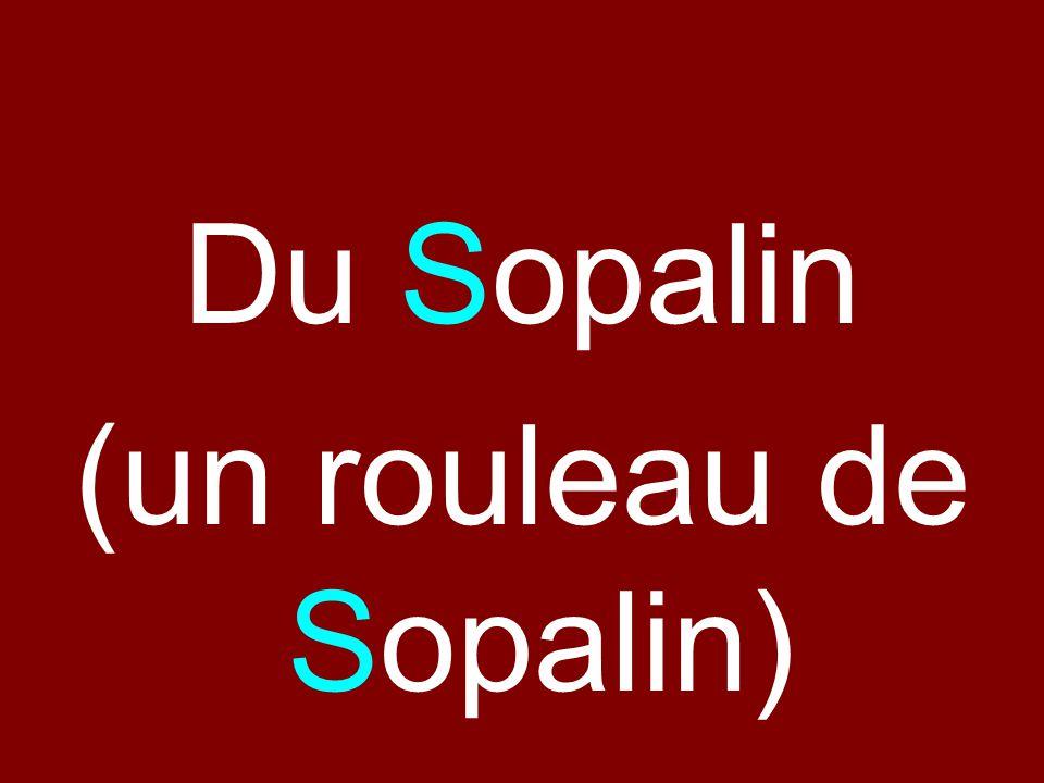 (un rouleau de Sopalin)