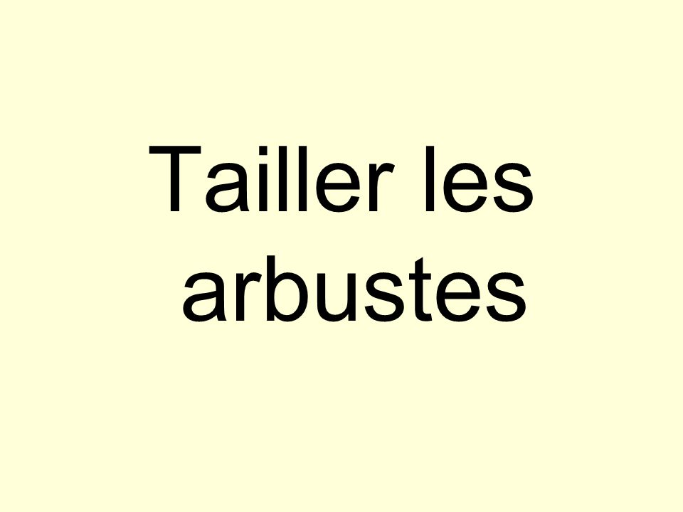 Tailler les arbustes
