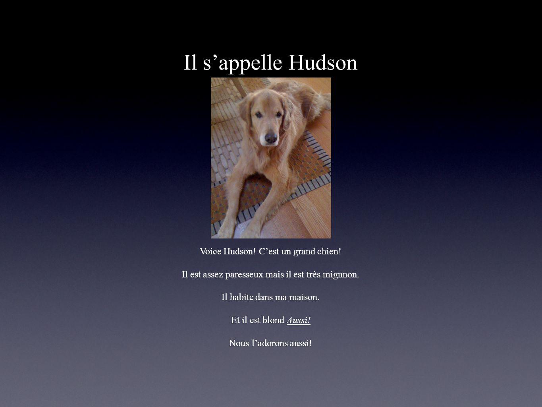 Il s'appelle Hudson Voice Hudson! C'est un grand chien!