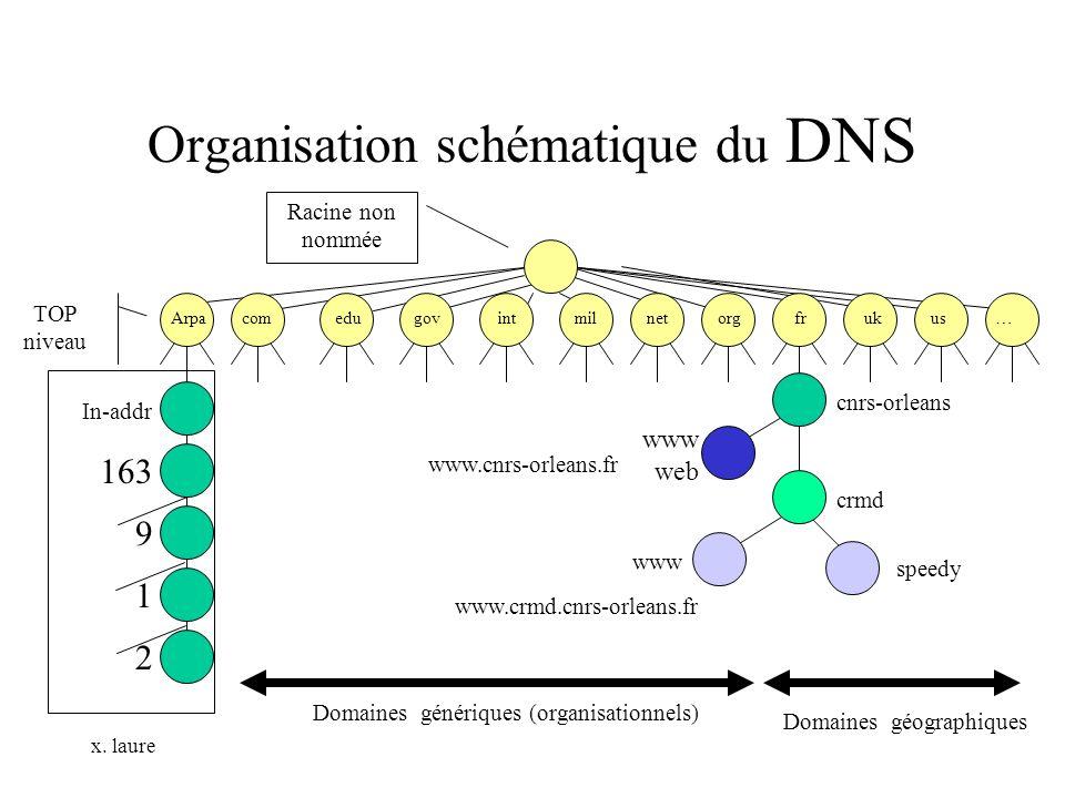 Organisation schématique du DNS