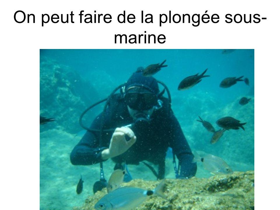On peut faire de la plongée sous-marine