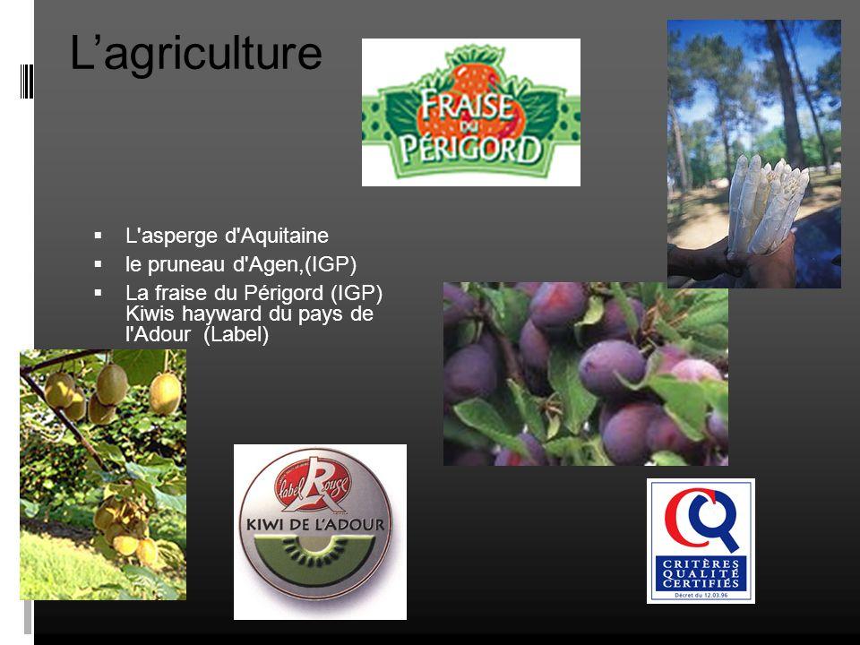 L'agriculture L asperge d Aquitaine le pruneau d Agen,(IGP)