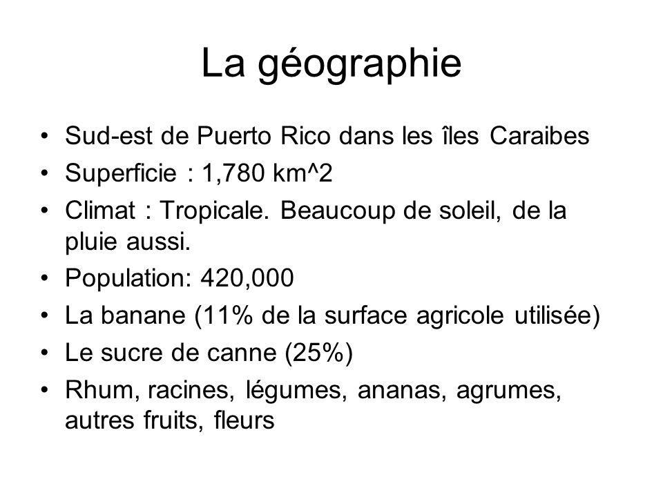 La géographie Sud-est de Puerto Rico dans les îles Caraibes