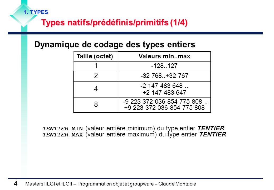 Dynamique de codage des types entiers