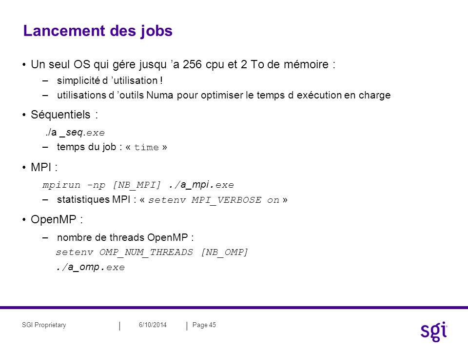 Lancement des jobs Un seul OS qui gére jusqu 'a 256 cpu et 2 To de mémoire : simplicité d 'utilisation !