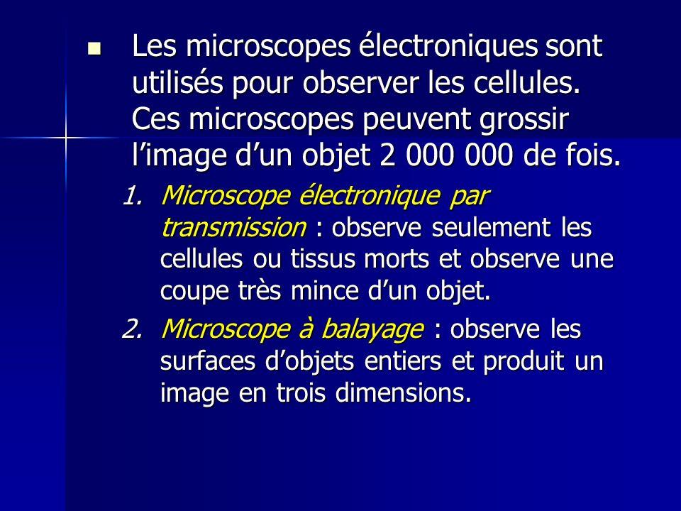 Les microscopes électroniques sont utilisés pour observer les cellules
