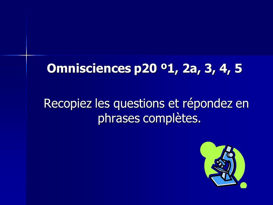 Recopiez les questions et répondez en phrases complètes.
