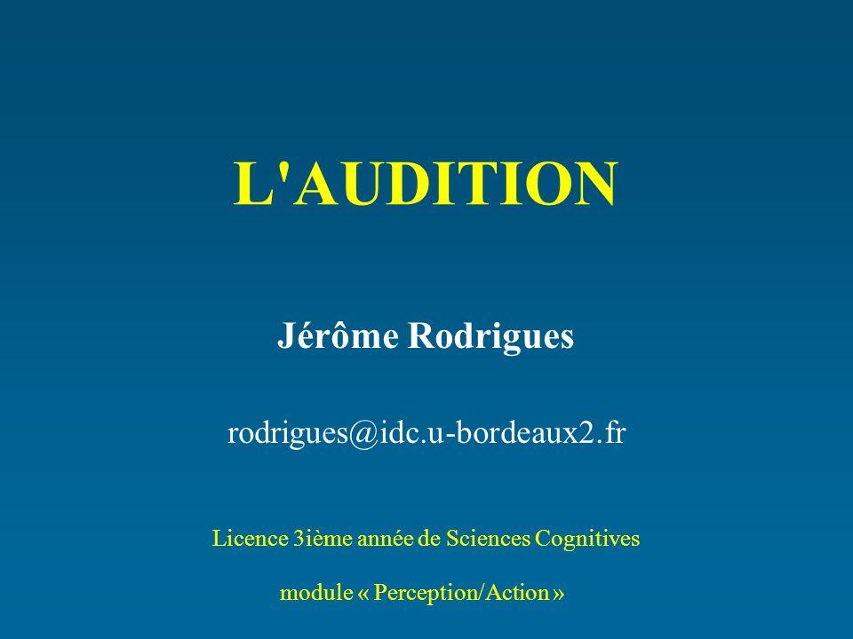 Jérôme Rodrigues rodrigues@idc.u-bordeaux2.fr