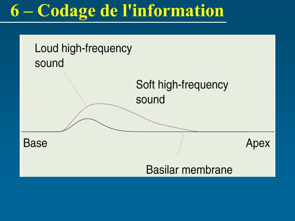 6 – Codage de l information