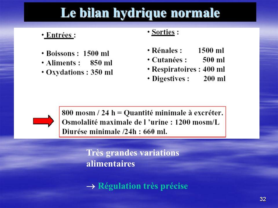 Le bilan hydrique normale