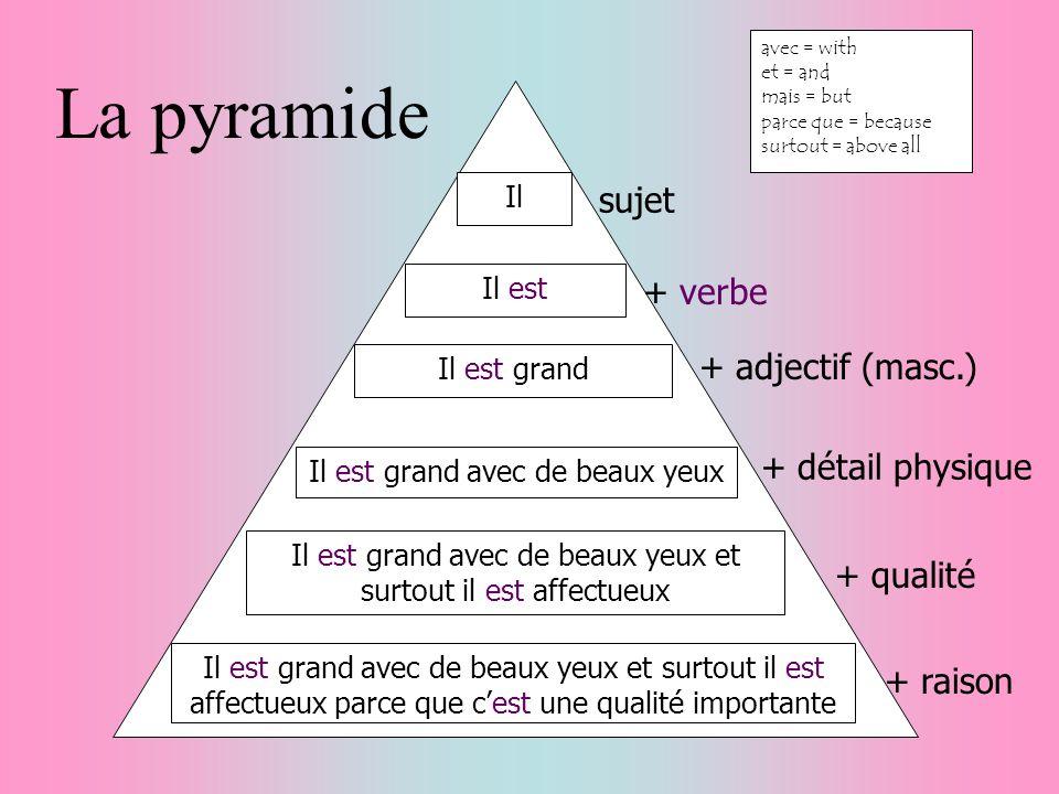 La pyramide sujet + verbe + adjectif (masc.) + détail physique