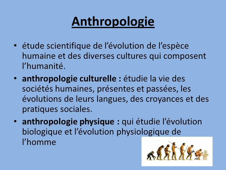 Anthropologie étude scientifique de l'évolution de l'espèce humaine et des diverses cultures qui composent l'humanité.