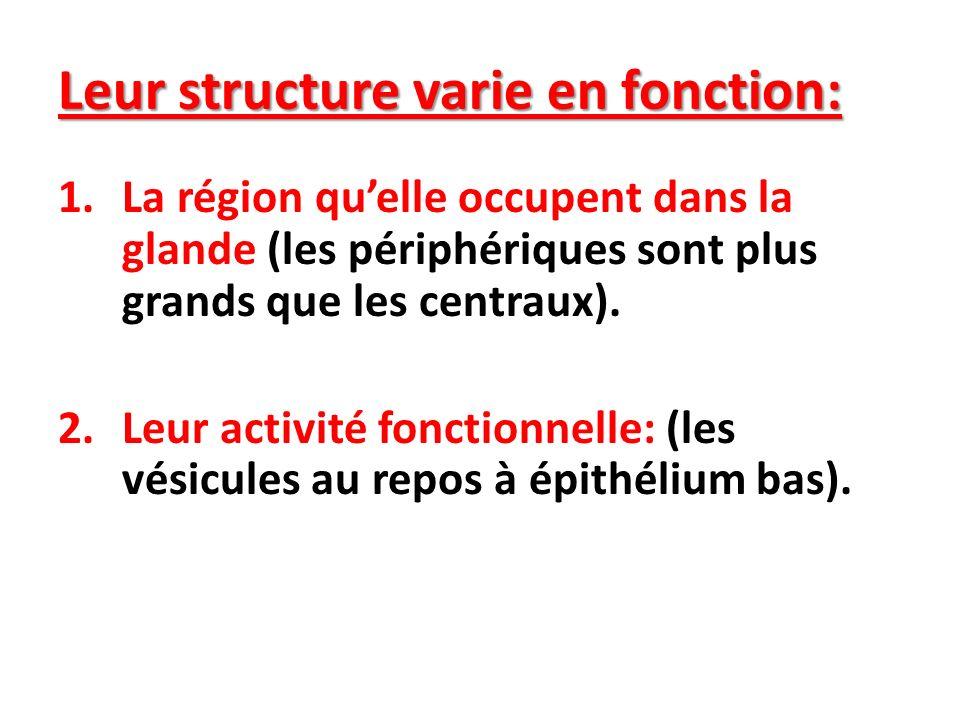 Leur structure varie en fonction: