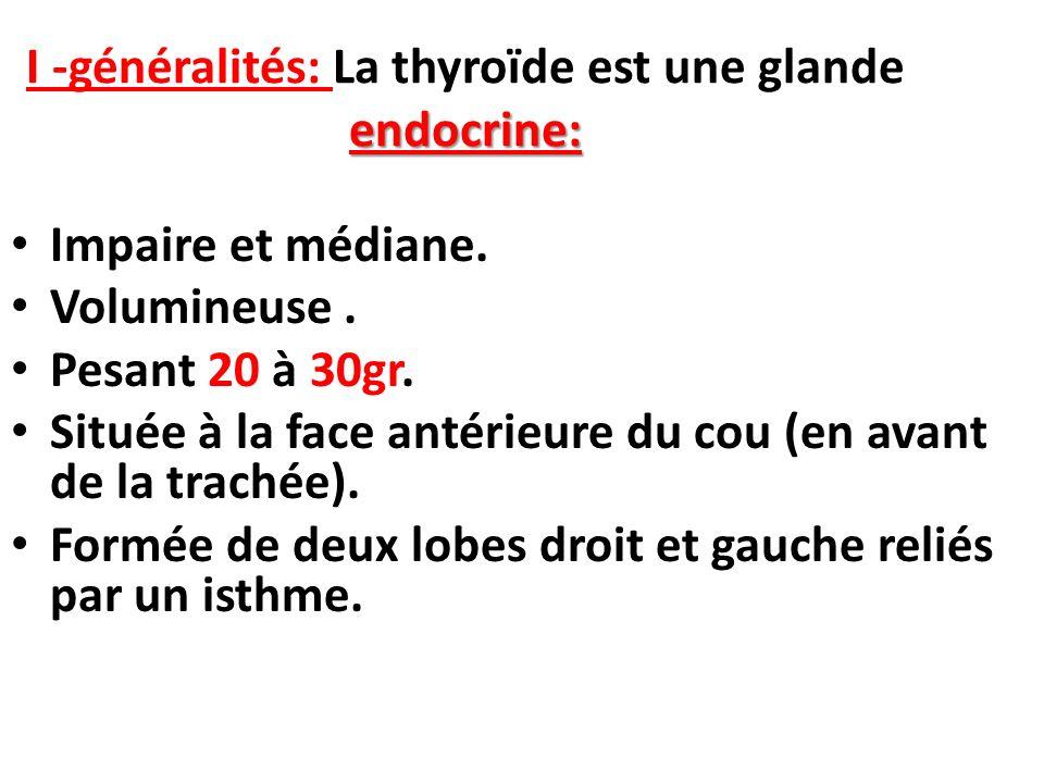 I -généralités: La thyroïde est une glande endocrine:
