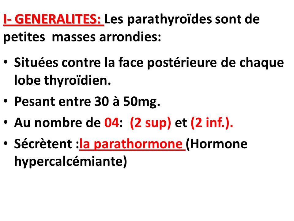 I- GENERALITES: Les parathyroïdes sont de petites masses arrondies: