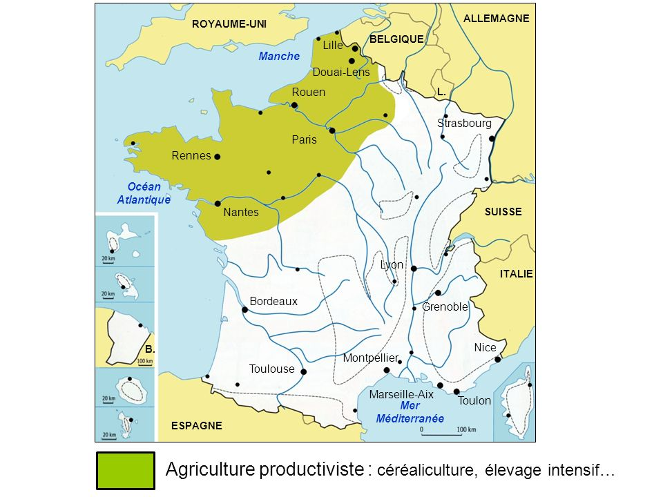 Agriculture productiviste : céréaliculture, élevage intensif…