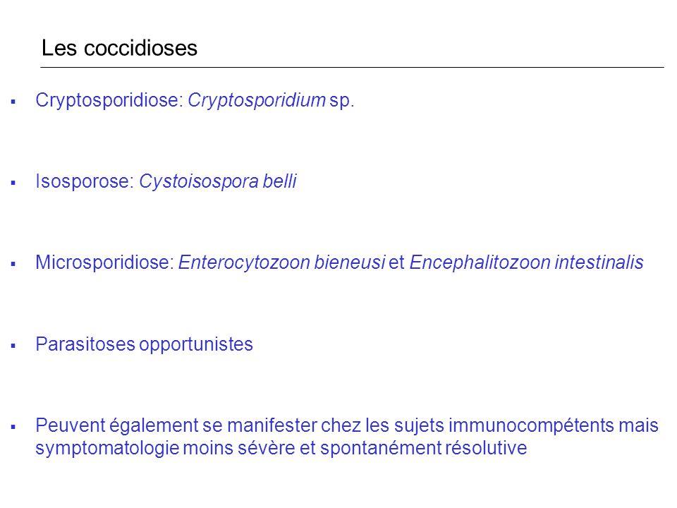 Les coccidioses Cryptosporidiose: Cryptosporidium sp.