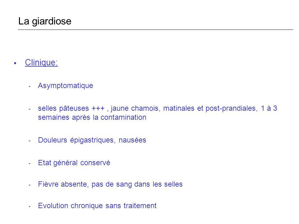 La giardiose Clinique: Asymptomatique