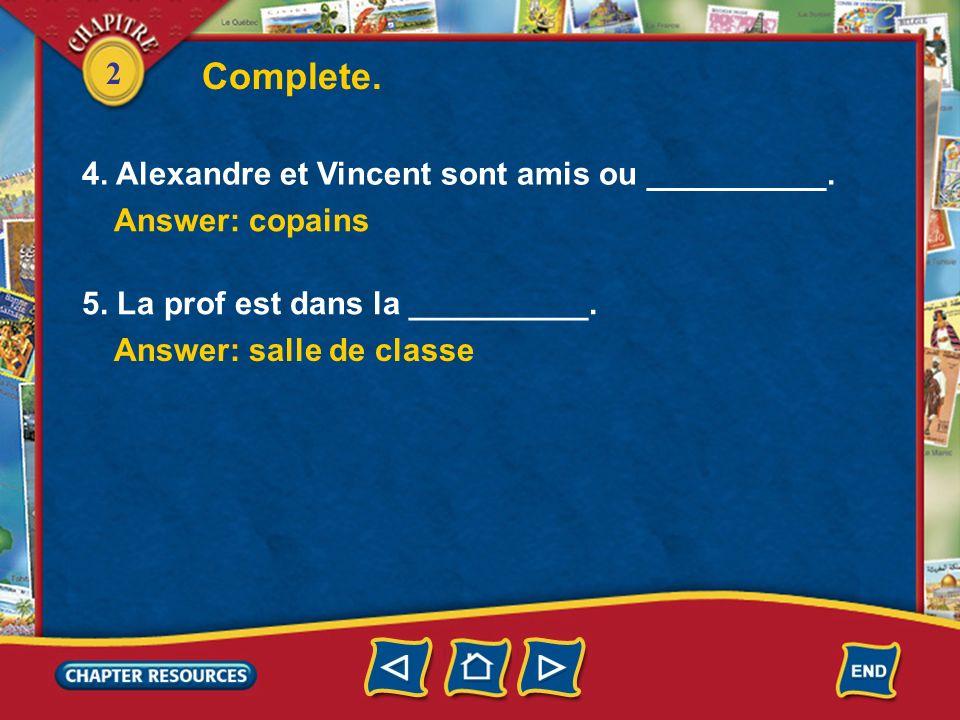 Complete. 4. Alexandre et Vincent sont amis ou __________.