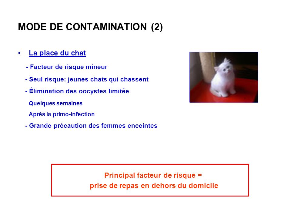MODE DE CONTAMINATION (2)