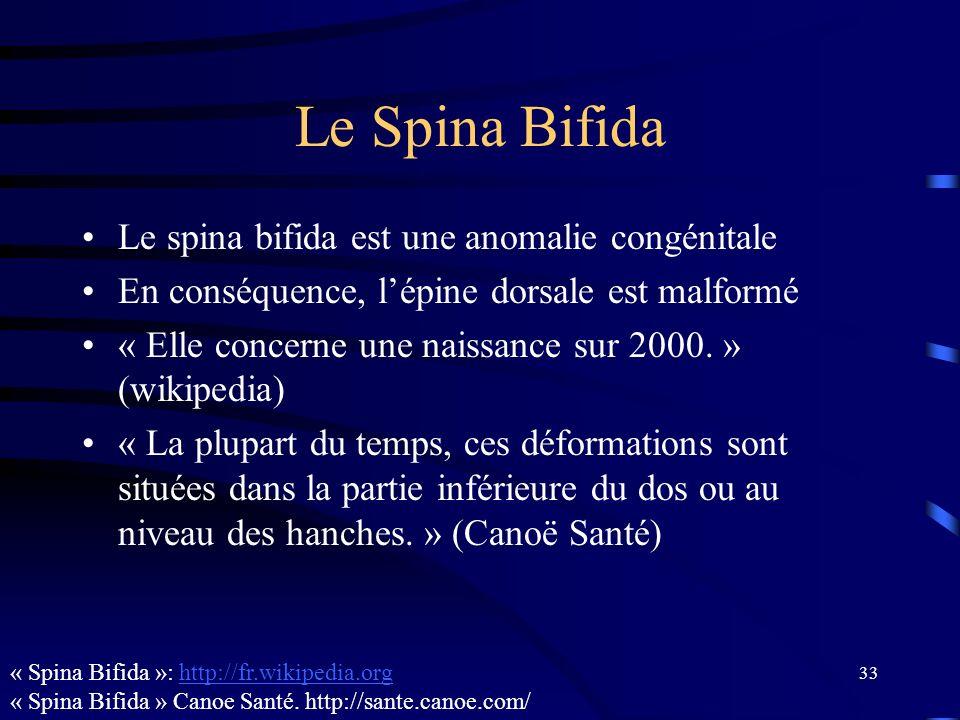 Le Spina Bifida Le spina bifida est une anomalie congénitale