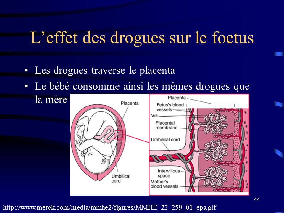 L'effet des drogues sur le foetus