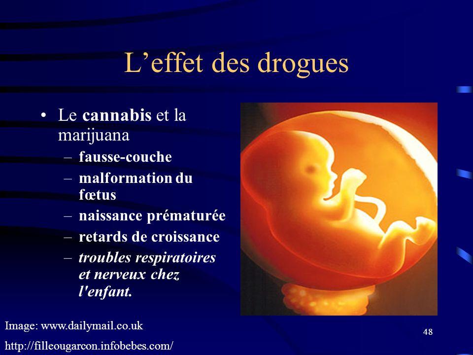 L'effet des drogues Le cannabis et la marijuana fausse-couche