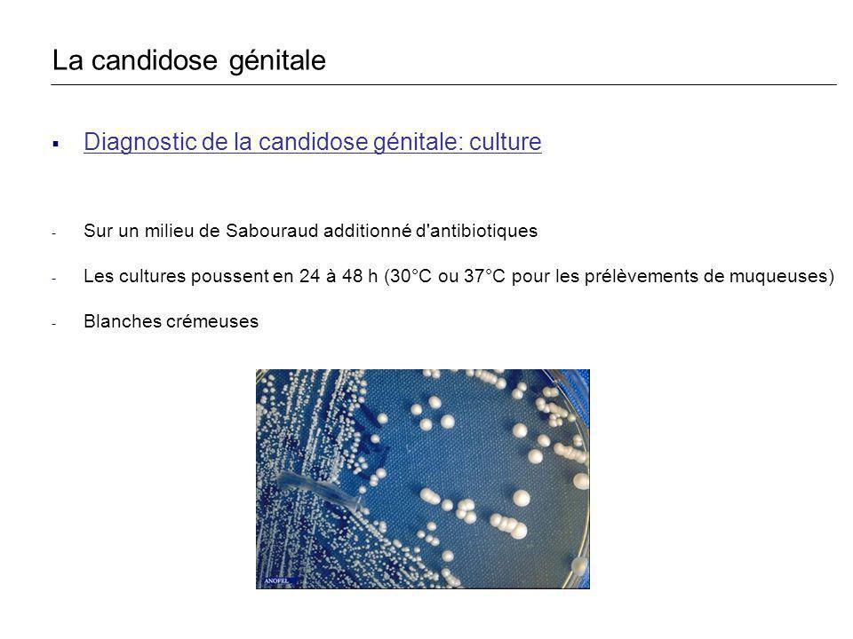 La candidose génitale Diagnostic de la candidose génitale: culture