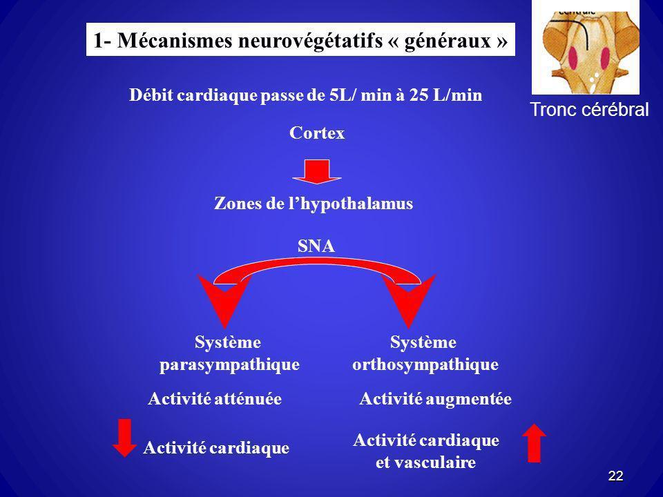 1- Mécanismes neurovégétatifs « généraux »