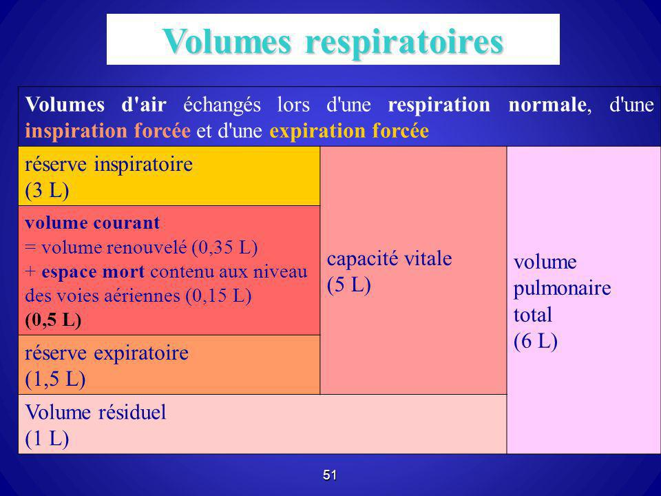 Volumes respiratoires