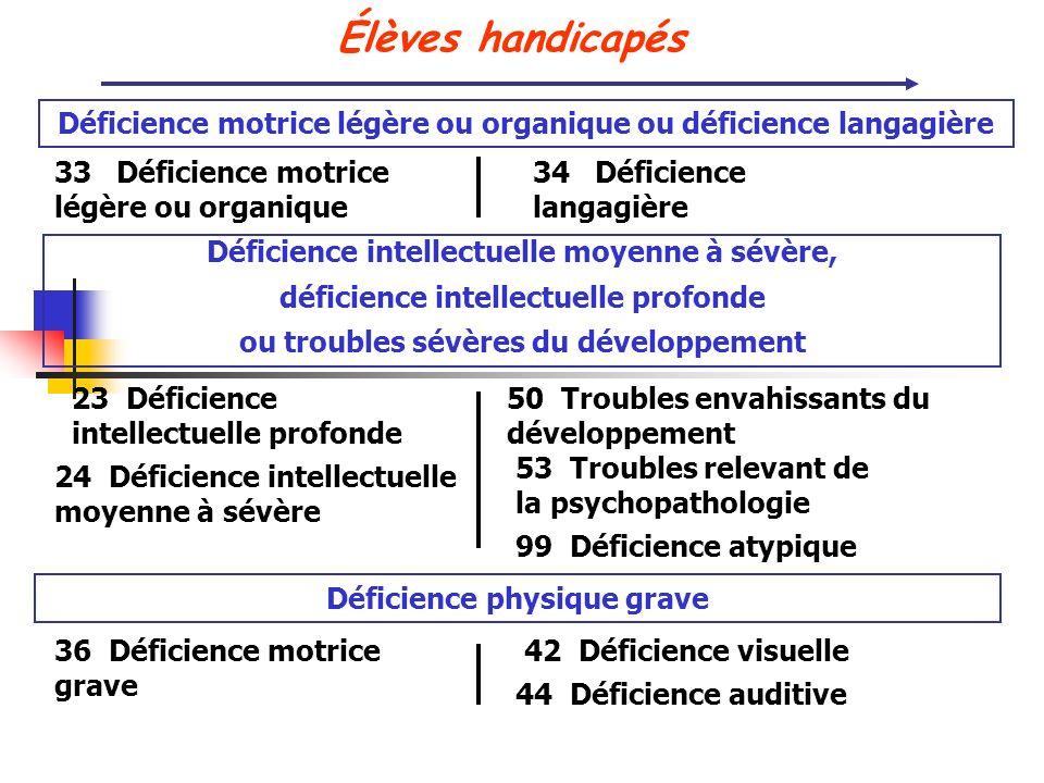Élèves handicapés Déficience motrice légère ou organique ou déficience langagière. 33 Déficience motrice légère ou organique.