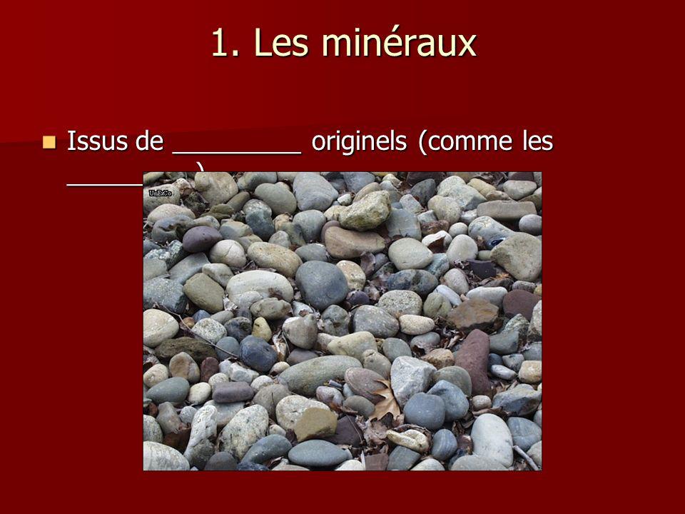1. Les minéraux Issus de _________ originels (comme les _________)